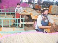 Làng nghề dệt chiếu thảm lát Định Yên – Đồng Tháp