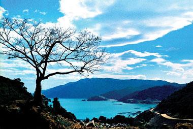 Vũng Rô (Phú Yên) - Điểm dừng chân lý tưởng