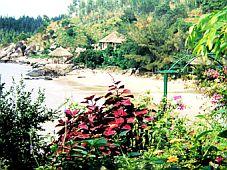 Đà Nẵng: Khảo sát các điểm đến du lịch