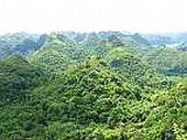 Huyện Cát Hải (Hải Phòng) bảo vệ nguồn tài nguyên rừng ngập mặn: Phát triển du lịch sinh thái