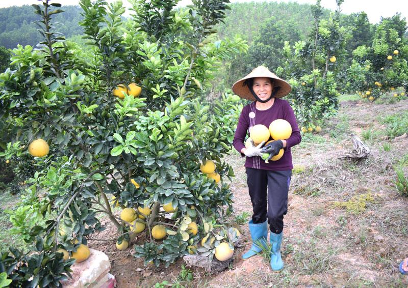 Ẩm thực ngày tết ở Tiên Yên