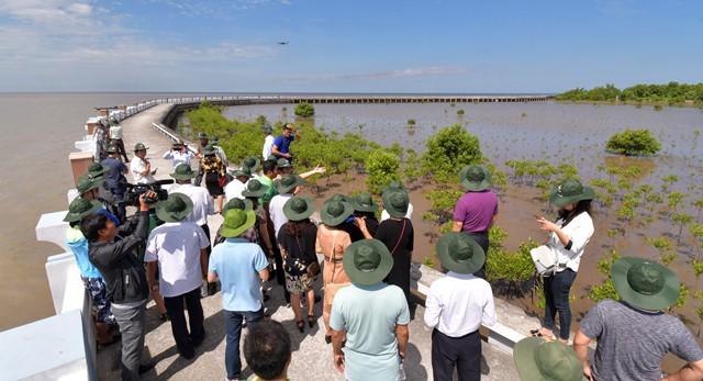 Mở tuyến tham quan xuyên rừng Vườn quốc gia mũi Cà Mau