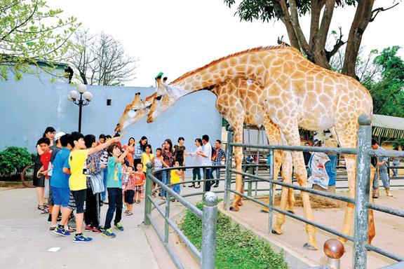 Phát triển du lịch sinh thái ở Hà Nội: Tăng trải nghiệm để níu chân du khách