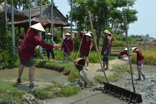 Đến Quảng Nam du lịch đồng quê, trải nghiệm cưỡi trâu, bắt cá