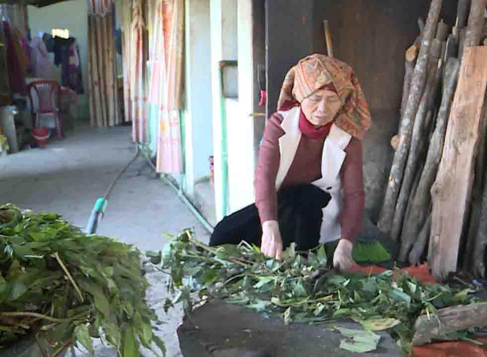 Tắm lá thuốc của người Dao - điểm nhấn du lịch Sìn Hồ (Lai Châu)