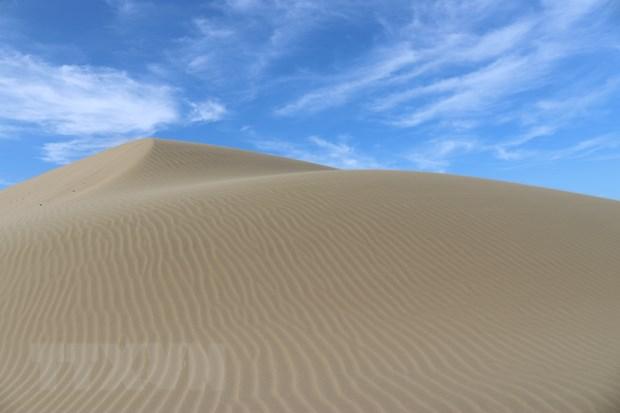 Đồi cát Nam Cương - Ninh Thuận vẻ đẹp hoang sơ quyến rũ du khách