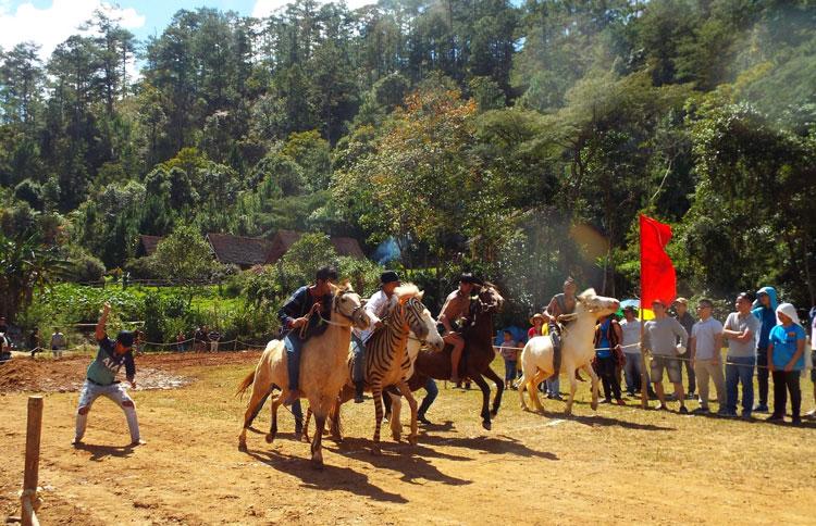 Sôi nổi Giải đua ngựa không yên dưới chân núi Langbiang
