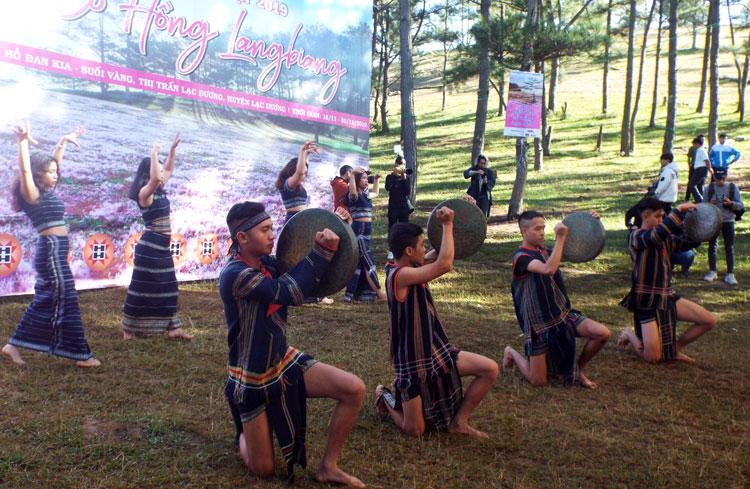 Lâm Đồng: Khai mạc Mùa hội cỏ hồng LangBiang
