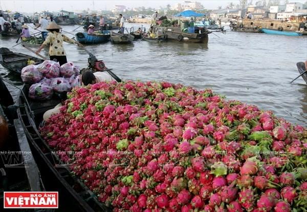 Phát triển sản phẩm du lịch đặc thù đường sông ở Cần Thơ