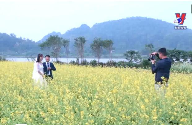 Cánh đồng hoa cải ven sông trổ hoa vàng rực thu hút du khách ở Thanh Hóa