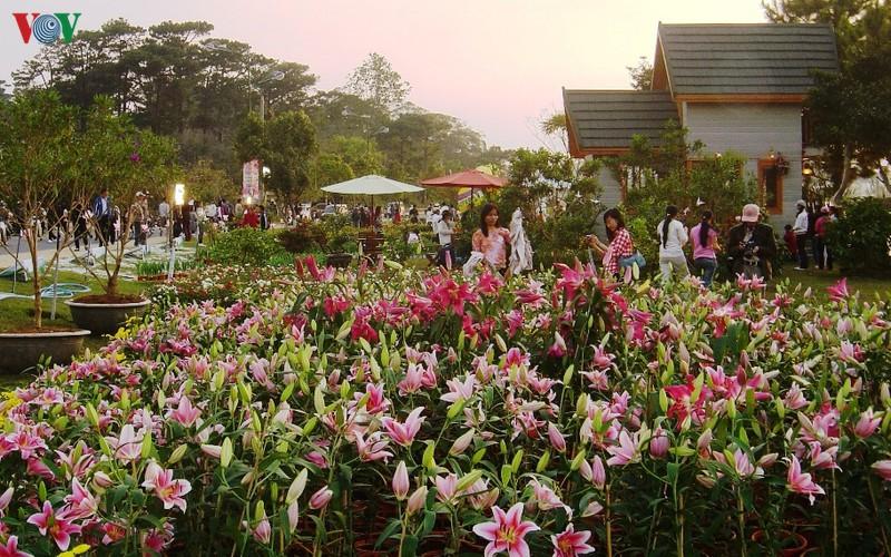 Nông nghiệp canh nông - mô hình thiết yếu của du lịch Đà Lạt