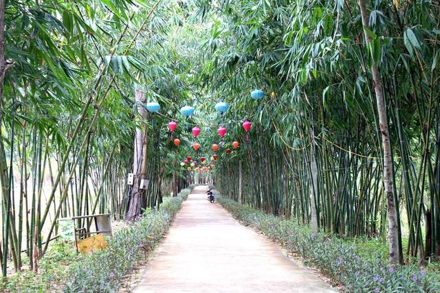 """Rủ nhau """"check in"""" rừng tre độc đáo nằm giữa Hội An và Đà Nẵng"""