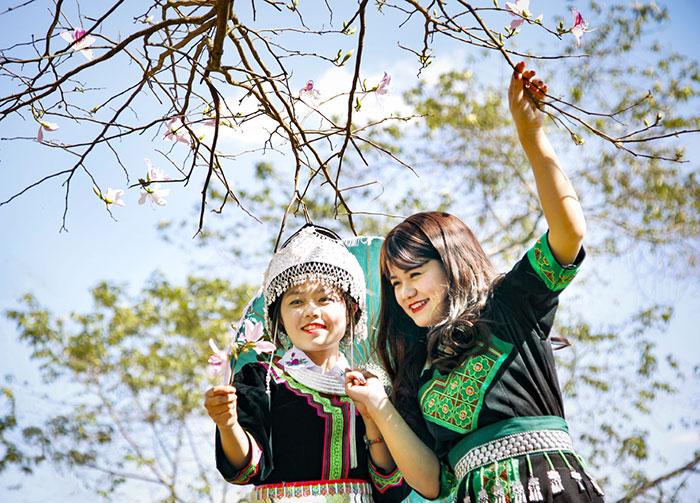 Điện Biên tổ chức nhiều hoạt động đặc sắc tại Lễ hội hoa ban 2019