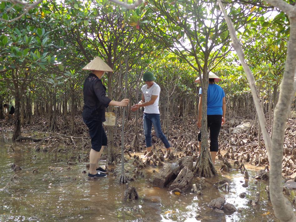 Đồng Rui (Quảng Ninh) phát huy thế mạnh du lịch sinh thái