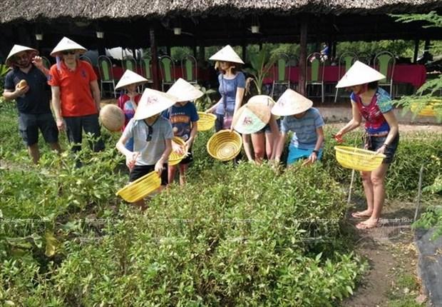 Tiềm năng phát triển du lịch nông nghiệp, sinh thái ở TP Hồ Chí Minh