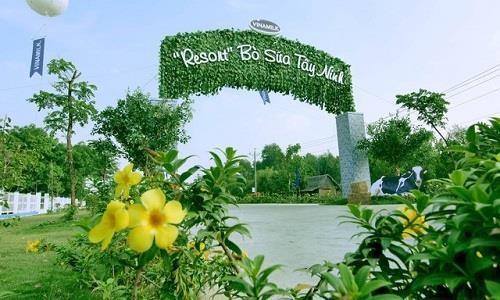 Resort bò sữa Vinamilk - điểm đến hấp dẫn ở Tây Ninh