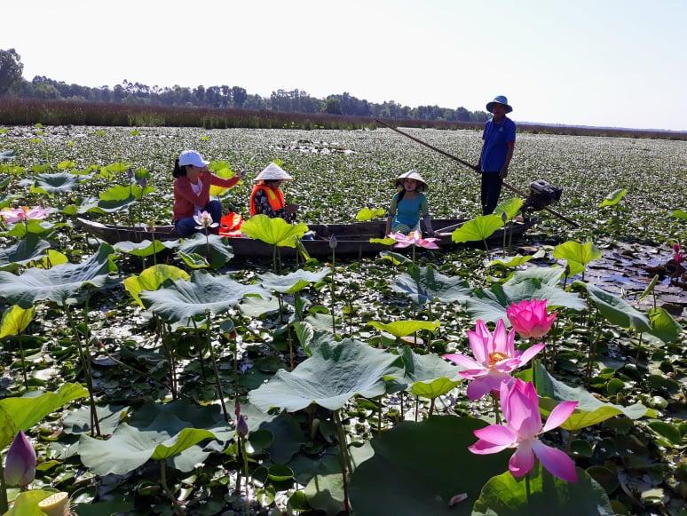 Trải nghiệm du lịch Tam Kỳ (Quảng Nam)