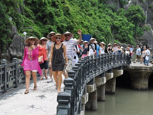 Tổng cục Du lịch triển khai thu thập thông tin khách du lịch năm 2019