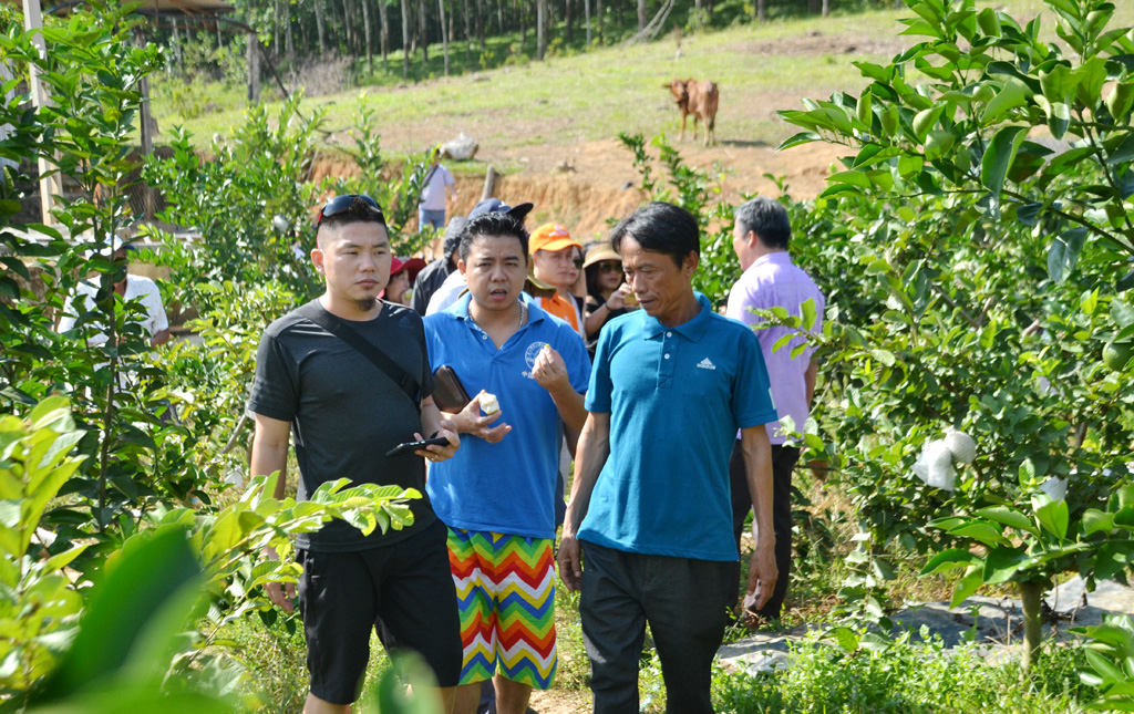 Thừa Thiên Huế: Kết nối đưa khách đến Nam Đông