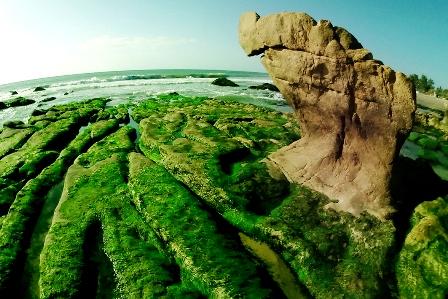 Hấp dẫn du lịch biển đảo Bình Thuận