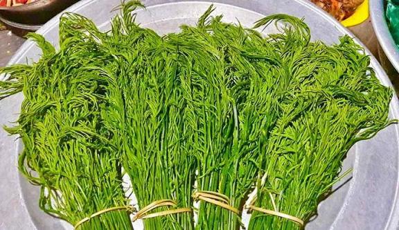 Đặc sản rau hôi vùng cao – Tuyên Quang