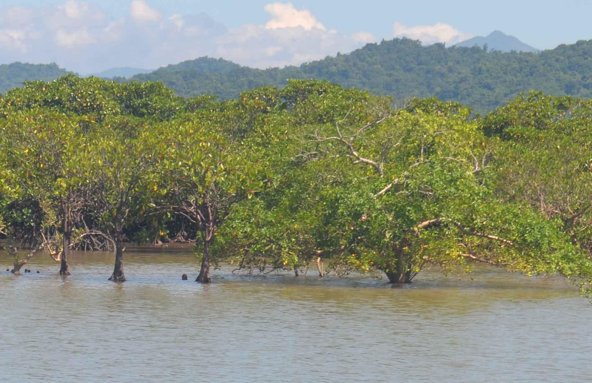 Khám phá Tiên Yên (Quảng Ninh): Ấn tượng đảo Lộc Vàng