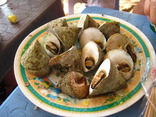 Lạ miệng món ăn từ ốc vú nàng Hội An