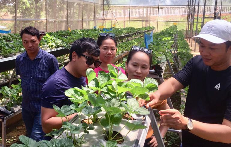 Phú Yên: Khảo sát các điểm đến tuyến du lịch cao nguyên Vân Hòa
