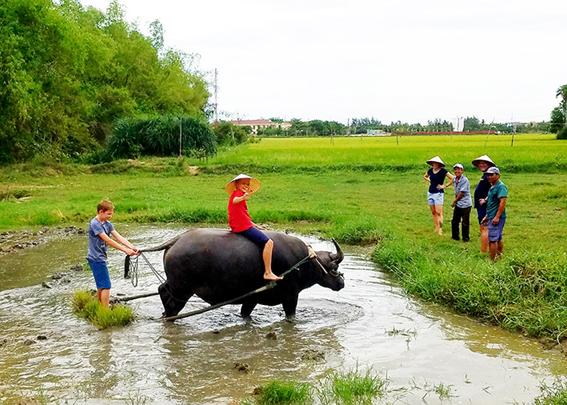 Du lịch Quảng Nam: Giữ khách truyền thống, hút khách tiềm năng