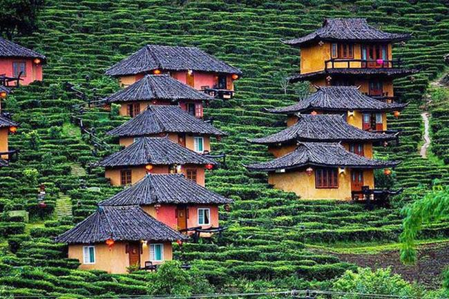Khám phá ngôi làng giữa đồi chè đẹp tuyệt ở Thái Lan
