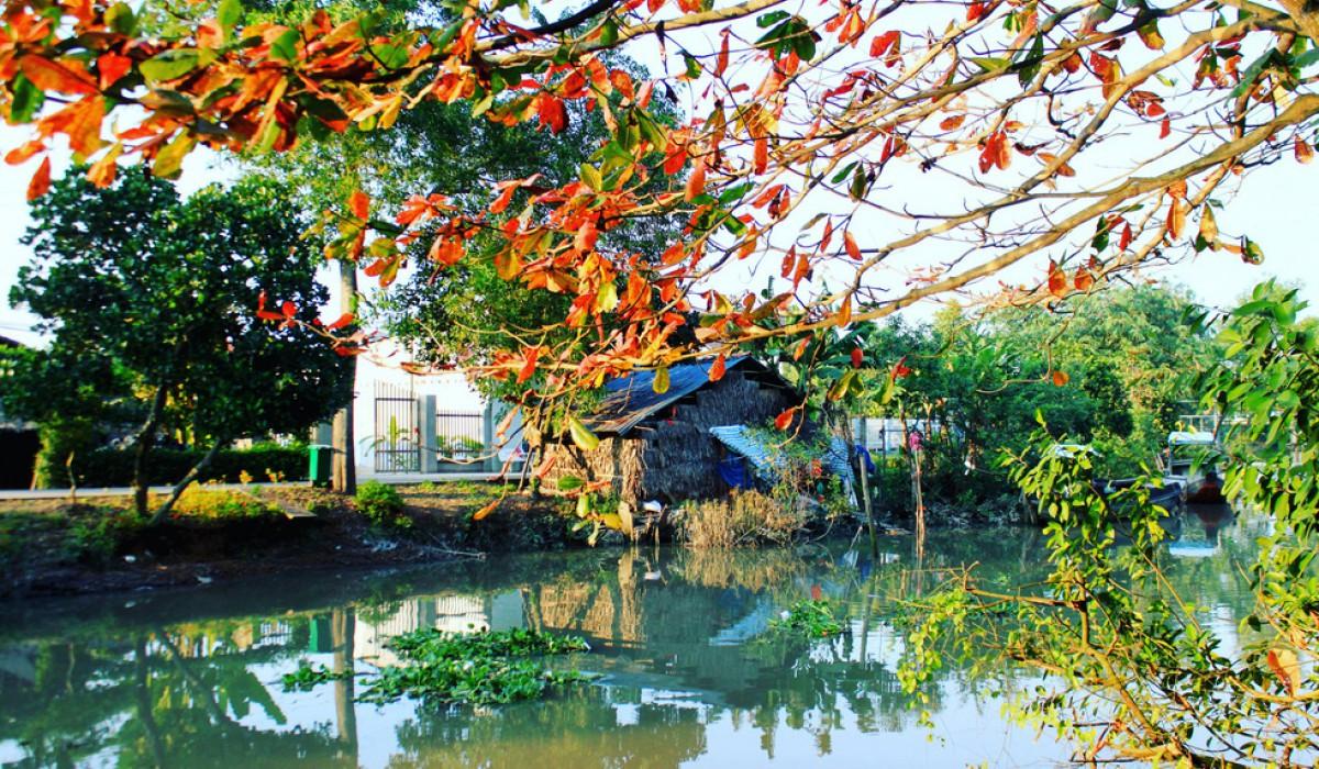 Tiền Giang: Tổ chức Lễ hội Văn hóa, Du lịch Làng cổ Đông Hòa Hiệp năm 2019