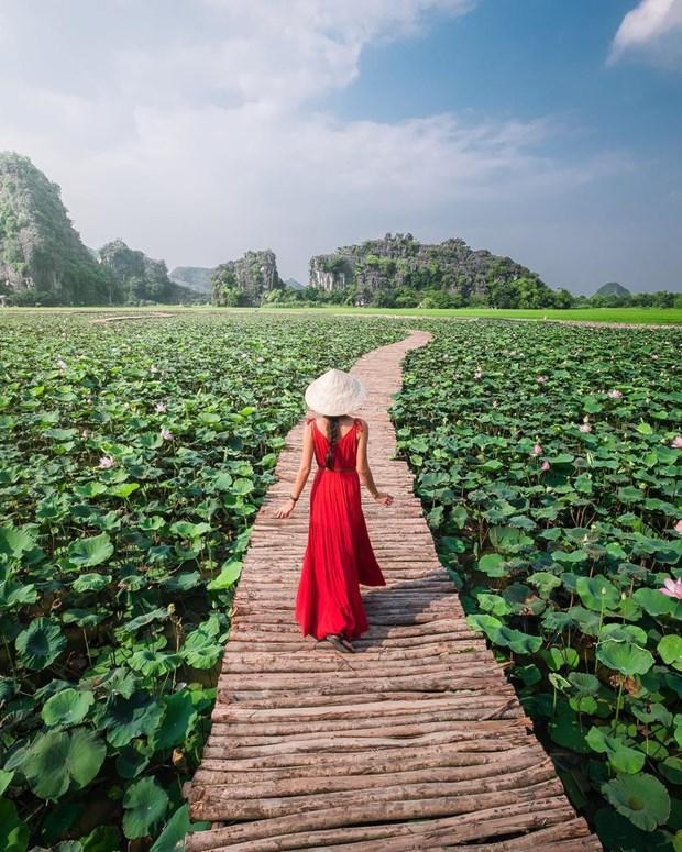 Những điểm du Xuân không nên bỏ lỡ khi du lịch Ninh Bình