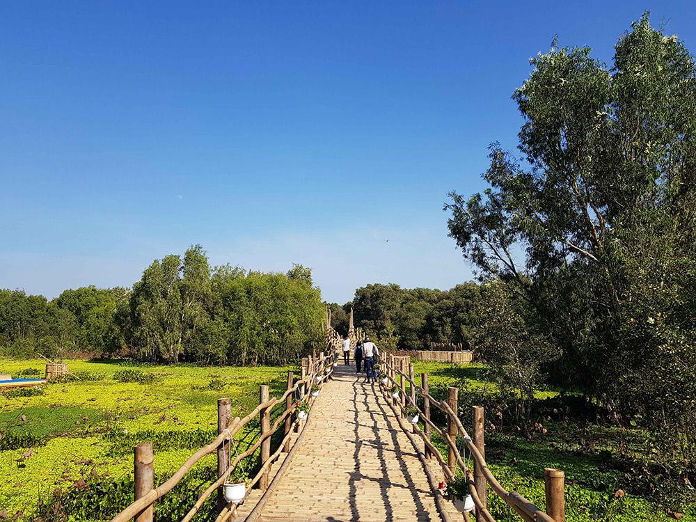 Bước ngoặt mới cho rừng tràm Trà Sư (An Giang)