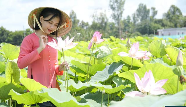 Du lịch nông nghiệp - đòn bẩy mới cho kinh tế xứ Sen hồng