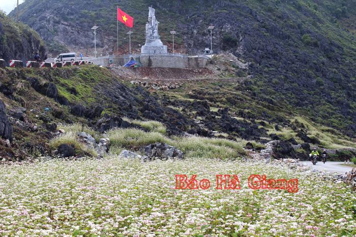 Đến Hà Giang khám phá mùa hoa của đá