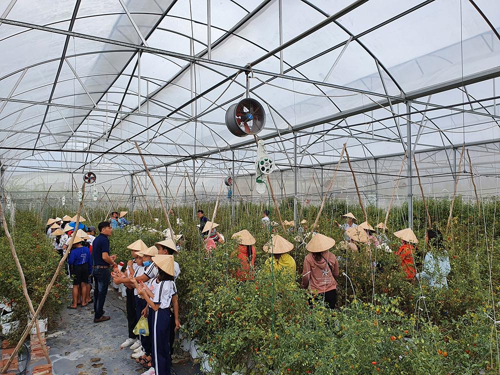 An Giang công nhận điểm du lịch Nông trại Phan Nam
