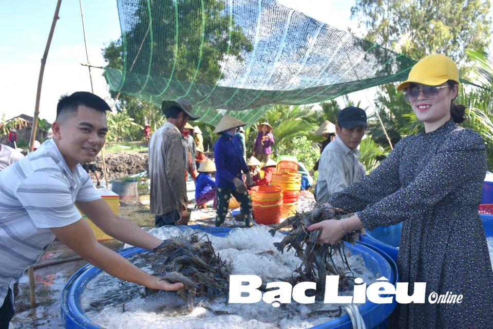 Du lịch nông nghiệp: Hướng đi mới trong phát triển du lịch Bạc Liêu
