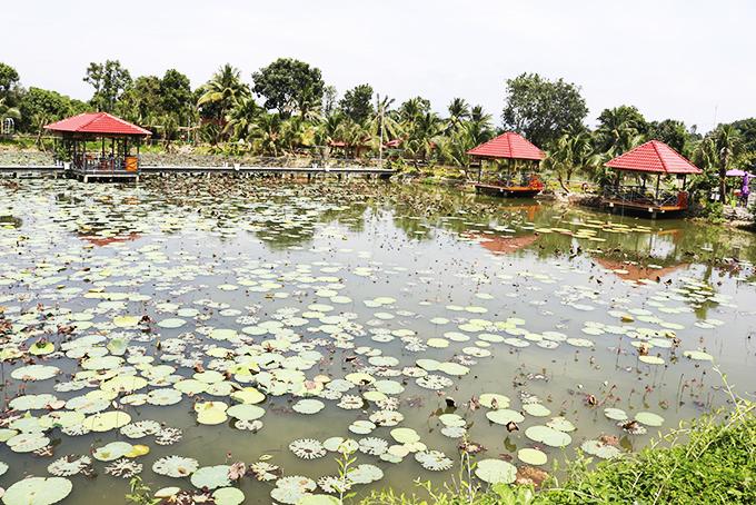 Khánh Hòa: Phát triển loại hình vườn sinh thái ở xã Suối Cát