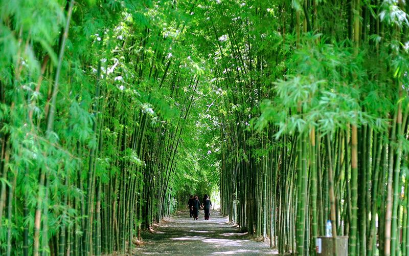 Du lịch sinh thái gắn kết văn hóa cộng đồng