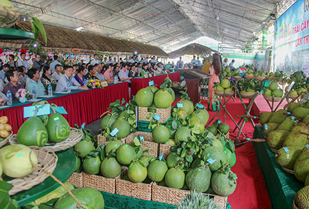 Hậu Giang: Gần 50 gian hàng tham gia ngày hội trái cây ngon