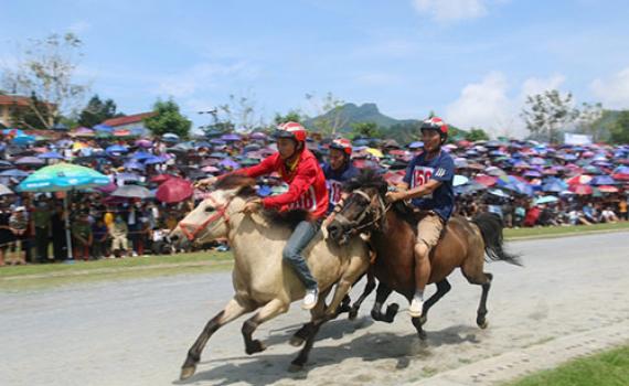 Nhiều lễ hội đặc sắc lần đầu tiên được tổ chức