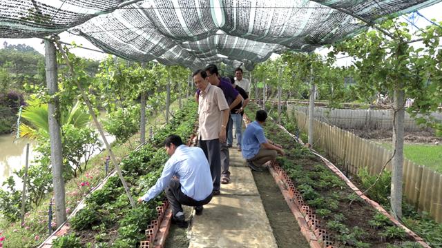 Đồng Tháp: Huyện Hồng Ngự sắp có điểm du lịch mới
