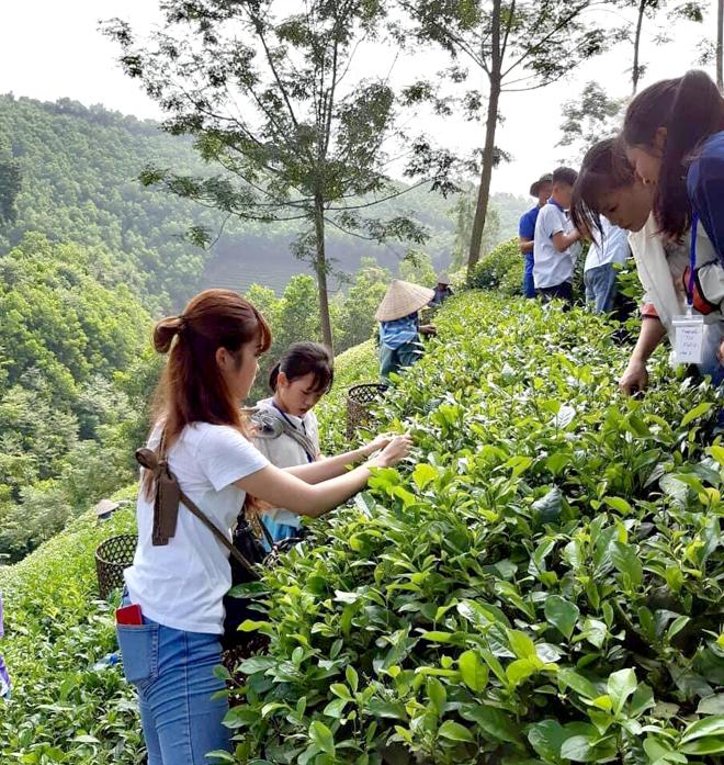 Sơn Dương (Tuyên Quang) phát triển du lịch trải nghiệm