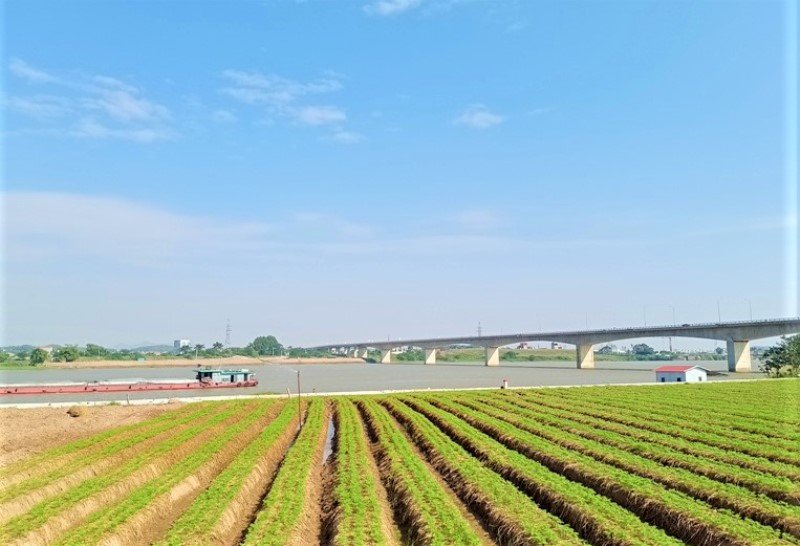 Bến Bình Than (Bắc Ninh) địa danh dấu ấn xưa