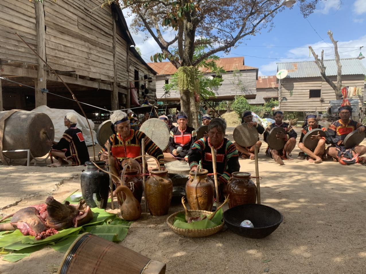 Lễ cúng mừng lúa mới của người Jrai (Gia Lai): Phục dựng để bảo tồn