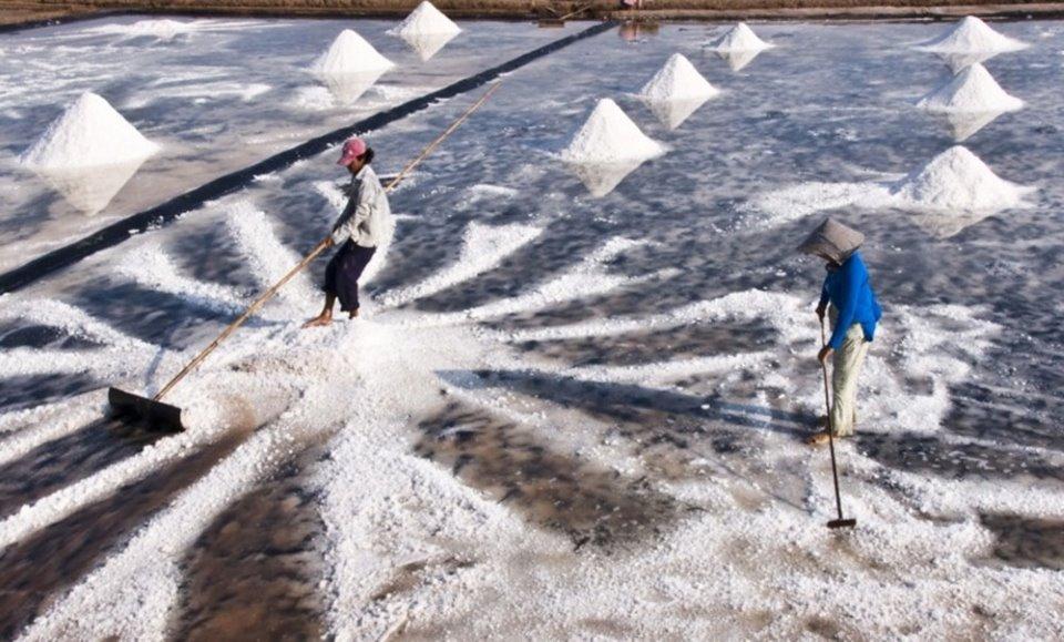 Mặn mòi nghề muối Bạc Liêu