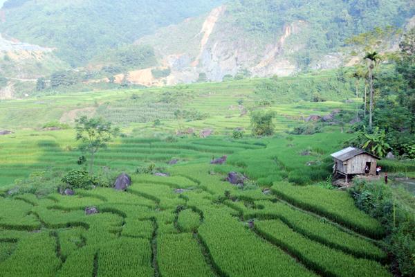 Bình yên rẻo cao Hợp Thành (Lào Cai)