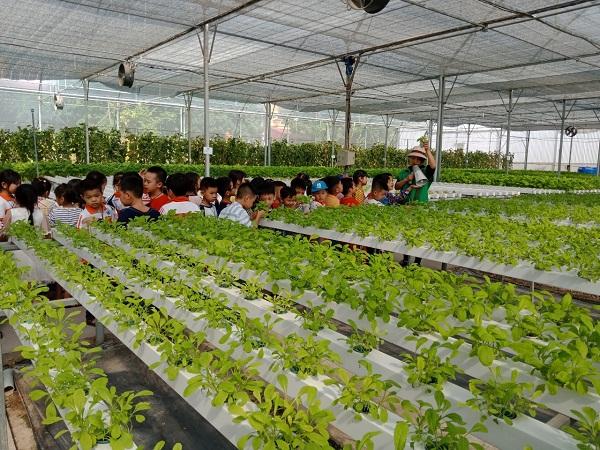 Phát triển du lịch nông nghiệp - Hướng đi bền vững