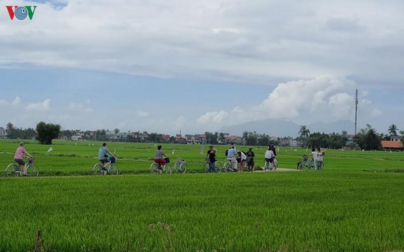 Quảng Nam tìm sản phẩm du lịch mới để thu hút du khách trở lại