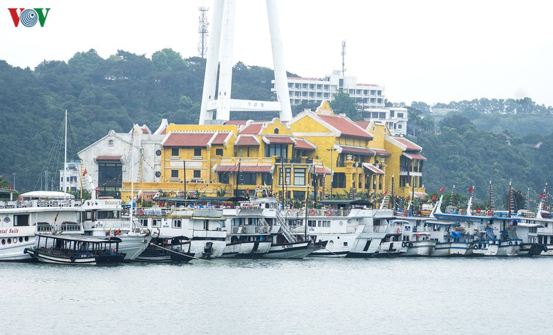 Quảng Ninh chuẩn bị trở lại hoạt động du lịch, dịch vụ trong tháng 5